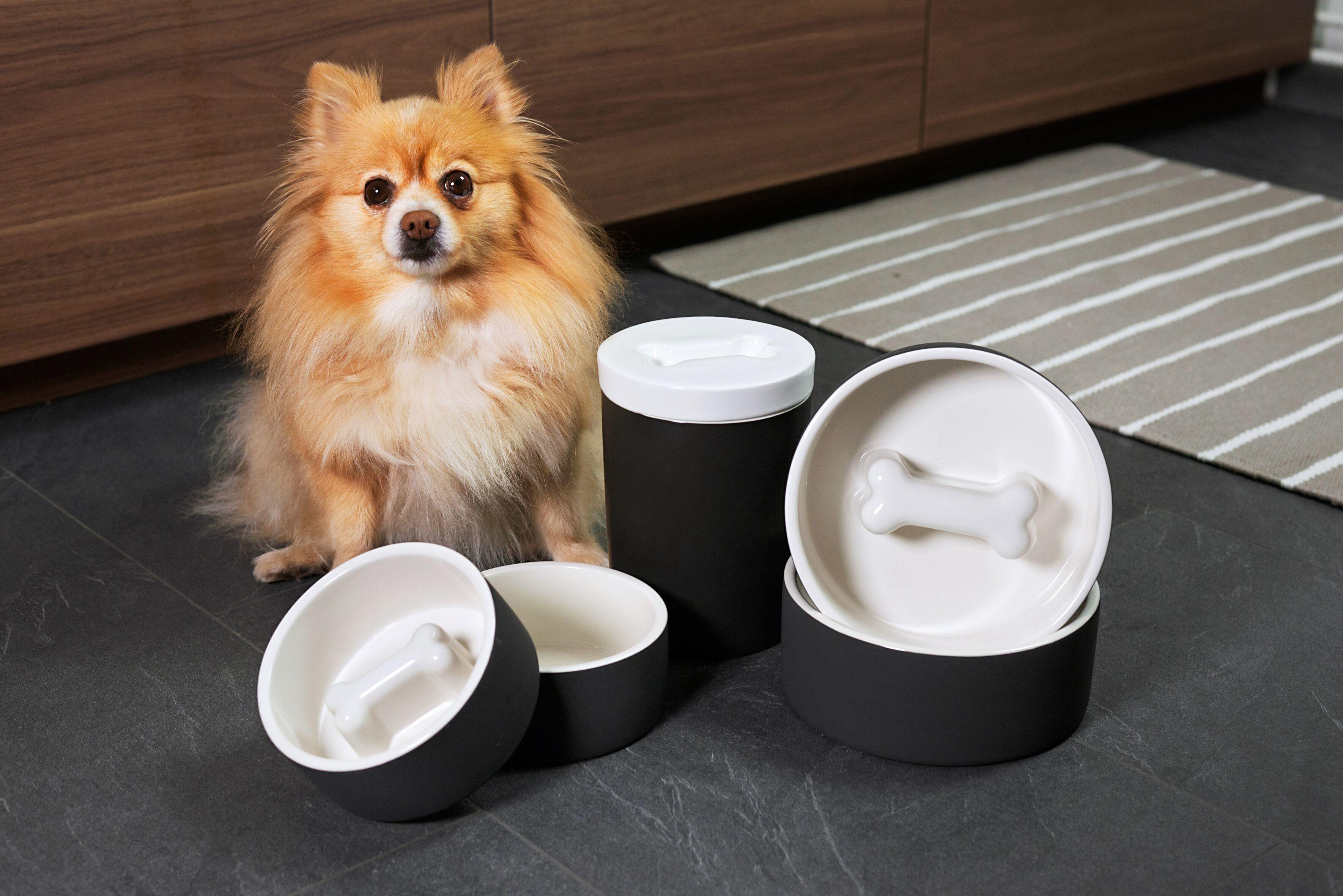 MAGISSO Pet Bowl, Bone (20 cm)  08
