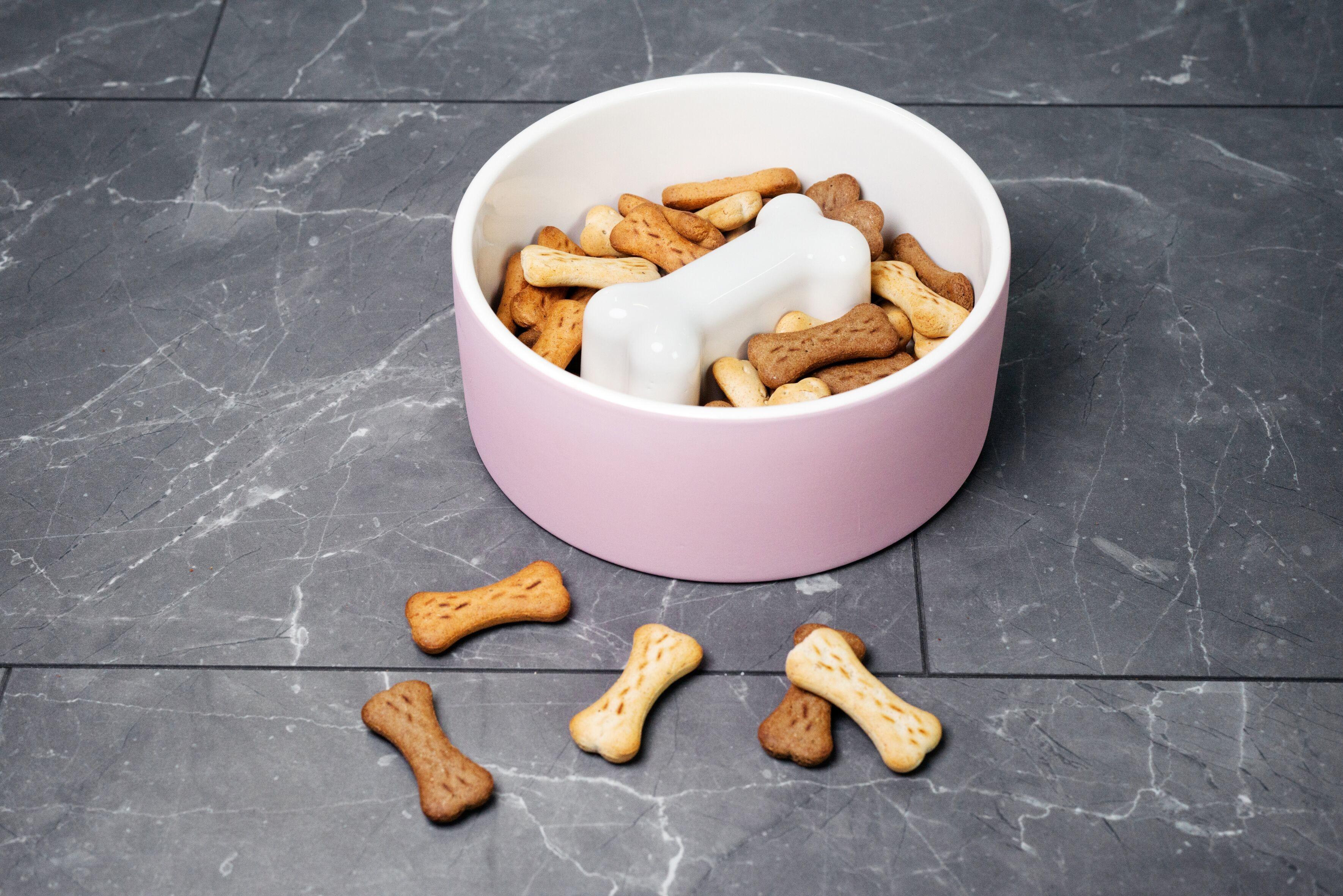 MAGISSO Pet Bowl, Bone (20 cm)  10