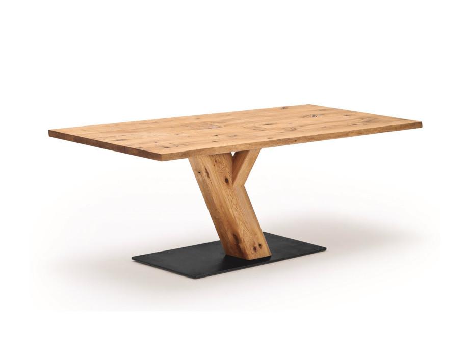 Wimmer Tisch Zweigl Z30 04