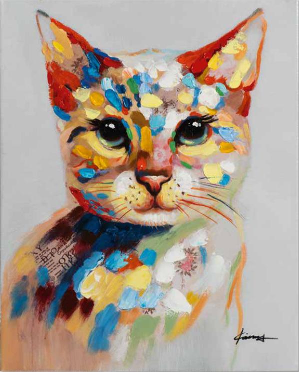 Bild Katze 03