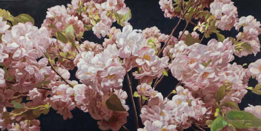 Bild Blumen 03