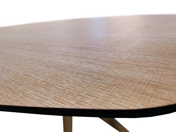 Esstisch ECLIPSE oval in Eiche 100 x 180 cm 02