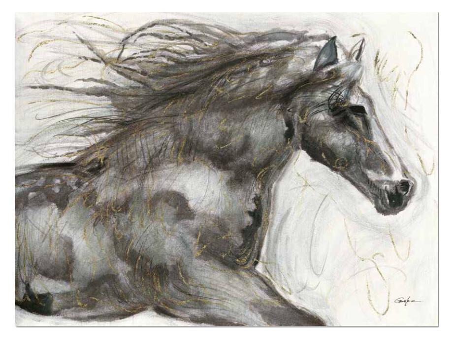 Bild Pferd 02